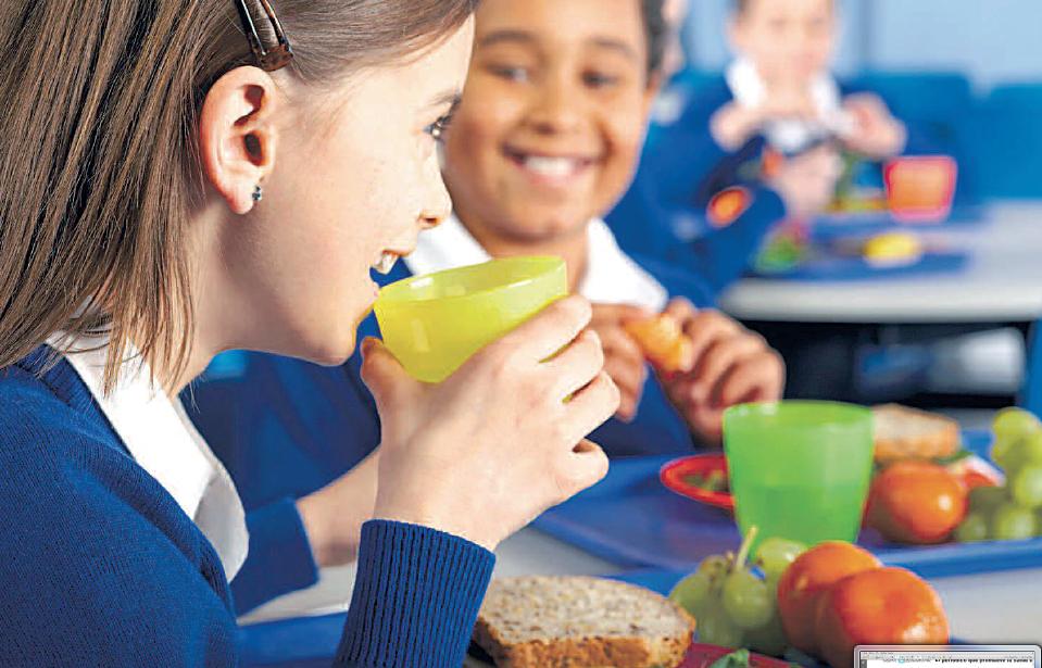 consejos-vida-escolar-saludable