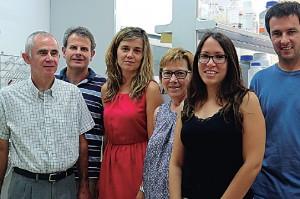 Los investigadores del grupo de investigación en Reactividad Molecular y Diseño de Fármacos del Departamento de Química de la Universitat de les Illes Balears (UIB)