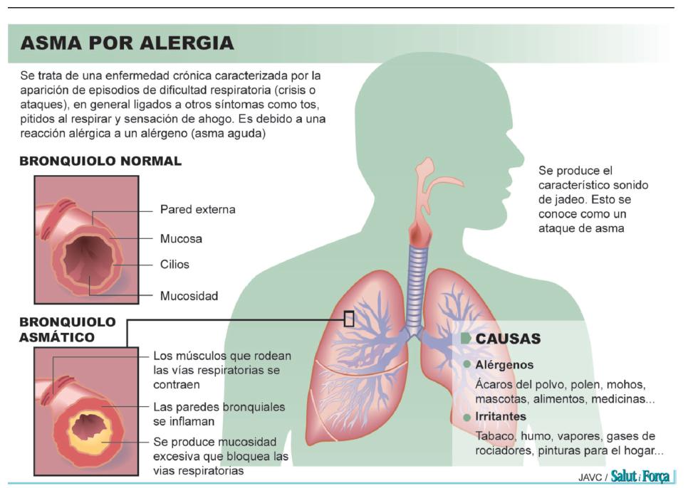 alergia-2