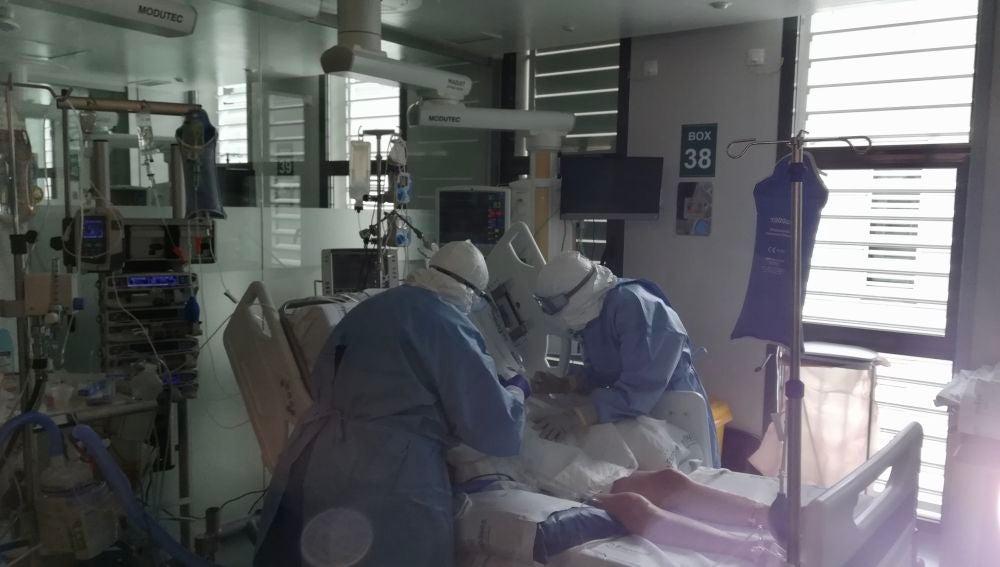Ocho de cada diez pacientes trasplantados que se contagian de COVID19 en España logran superar la infección por SARS-CoV-2 – Salud Ediciones